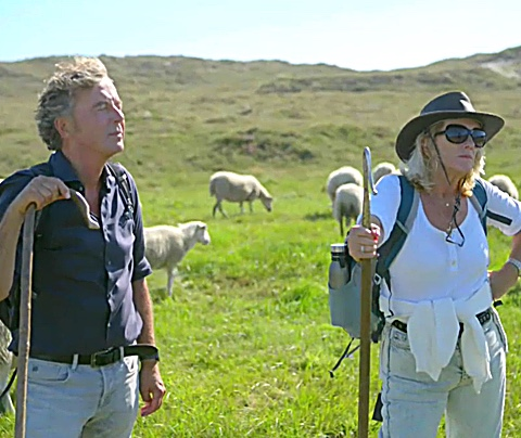 SBS 6 huurt suite in kijkcijferhel: schapenshow naar 75K